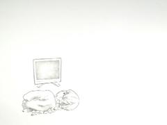 AF2011_tvshow-ishihara_P.jpg